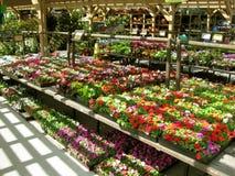 Botanical Garden Centers, Claremont, California, USA. Botanical Garden Centers in Claremont, California, USA royalty free stock photography