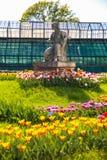 The Botanical Garden in Cluj-Napoca Stock Image