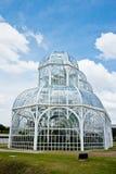 Botanical garden. The Botanical Garden of Curitiba, Brazil Stock Images