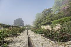 Botanical garden at dawn. Stock Photos