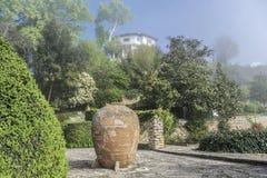 Botanical garden at dawn. Stock Image