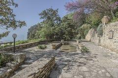 Botanical garden at dawn. Royalty Free Stock Images