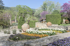 Botanical garden at dawn. Royalty Free Stock Photo