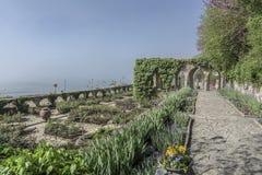 Botanical garden at dawn. Stock Images