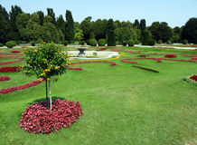 Botanical garden. And fountain in Vienna during summer Royalty Free Stock Images