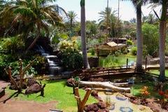 Botanical garden in Fuerteventura island. Picturesque entrance to the botanical garden in Oasis Park on Fuerteventura Canary island Royalty Free Stock Photo