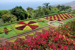 The botanical garden of Funchal in Madeira