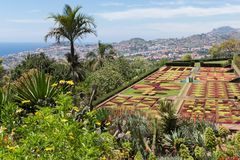 Botanical garden Funchal at Madeira Island, Portugal Stock Images
