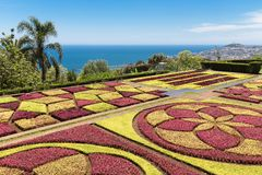Botanical garden Funchal at Madeira Island, Portugal Stock Image