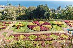 Botanical garden. Funchal, Madeira island, Portugal royalty free stock images
