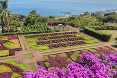 Botanical garden of Funchal, Madeira island, Portugal. Royalty Free Stock Photography