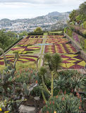 Botanical garden in Funchal Stock Photography
