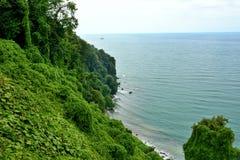 Botanical garden Georgia Batumi seashore Black Sea coast Stock Photos