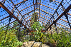 Botanical garden, Greenhouse Stock Photography