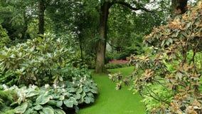 Botanical garden in the Holyrood House Palace in Edinbugrh, Scotland, UK stock video