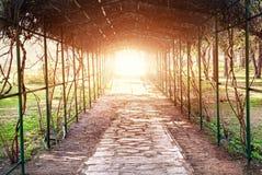 Botanical garden in India Royalty Free Stock Photos