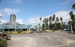 Botanical garden in Jeju  Island, botanical garden,volcanic island Royalty Free Stock Photo