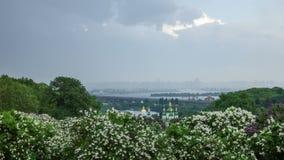 Botanical garden in Kyiv 4K stock video