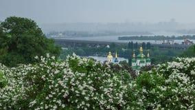 Botanical garden in Kyiv stock video