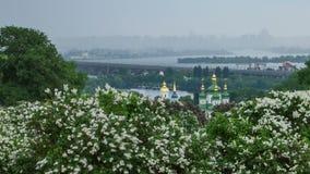 Botanical garden in Kyiv stock footage