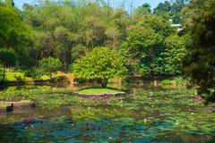 Botanical Garden landscape Stock Image