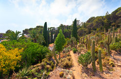 Botanical garden on Mediterranean coast of Spain, Blanes Royalty Free Stock Photo