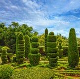 Botanical garden Monte, Funchal, Madeira island, Portugal