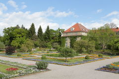 Botanical garden in munich with a blue sky Stock Photos