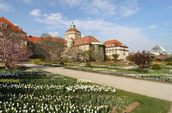 Botanical Garden in Munich Royalty Free Stock Photo