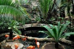 Botanical Garden Royalty Free Stock Image