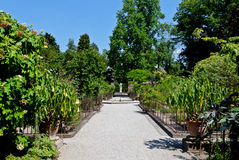 Botanical Garden, Padua, Italy. Path with greenhouse, trees and flowers in the botanical garden of Padova, Italy stock images