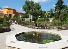 In the Botanical Garden in Padua. Stock Images