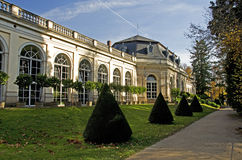 Botanical garden in Pillnitz palace Stock Photos