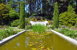 Botanical garden pond Stock Photos