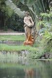 Botanical garden in Rio de Janeiro, Brazil. stock photo