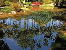 Botanical garden. In Rio de Janeiro city, Brazil Stock Photography