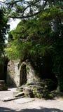 Botanical garden ruin Royalty Free Stock Photo