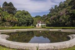 Botanical Garden, Sao Paulo, Brazil Stock Images