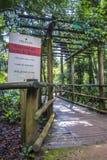 Botanical Garden, Sao Paulo, Brazil Royalty Free Stock Images