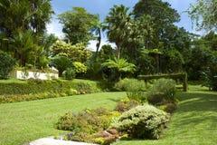 Botanical garden in St Vincent, Caribbean. Montreal gardens in St Vincent, Caribbean Stock Images