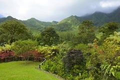 Botanical garden in St Vincent, Caribbean. Montreal gardens in St Vincent, Caribbean Royalty Free Stock Image