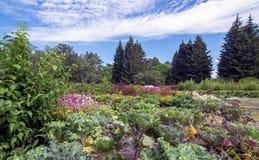 Botanical garden on a sunny day Stock Photo