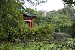 Botanical garden Taipei taiwan royalty free stock photography