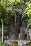Botanical garden in Tartu, Estonia. Path leading up the stairs in botanical garden Stock Images