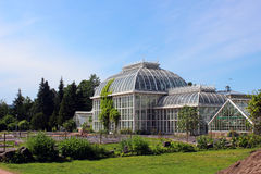 Botanical Garden of the University of Helsinki. Summer Royalty Free Stock Photos