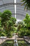 The Botanical Garden of University of Valencia Stock Photos