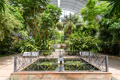 The Botanical Garden of University of Valencia Stock Images