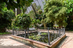 The Botanical Garden of University of Valencia Stock Image