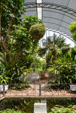 The Botanical Garden of University of Valencia Stock Photography