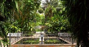 The Botanical Garden of University of Valencia stock video footage